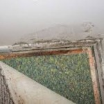 Symptoms Mold Exposure